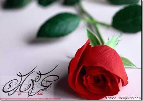 www_sunna_info_pic_2004-11-11_033343